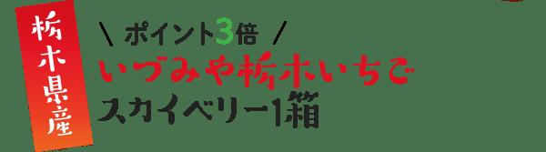 栃木県産 \ポイント3倍/ いづみや栃木いちご スカイベリー1箱