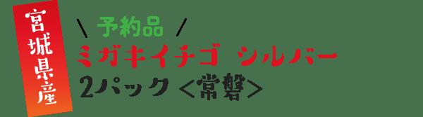 宮城県産 \予約品/ ミガキイチゴシルバー 2パック <常磐>