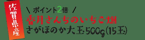栃木県産 \ポイント2倍/ 香月さんちのいちご畑 さがほのか大玉500g(15玉)