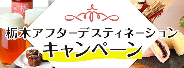 栃木アフターデスティネーションキャンペーン〜本物の出会い 栃木〜