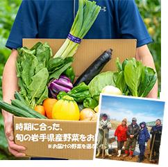季節に合わせた旬野菜 岩手県産イーハトーヴ野菜セット