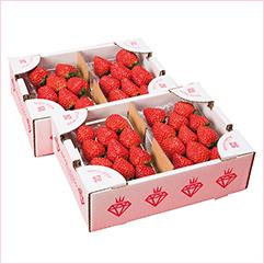 「食べる宝石」ミガキイチゴ レギュラー4パック