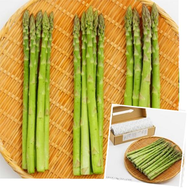 喜多方産 グリーンアスパラガス SML混合1kg