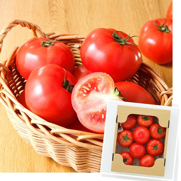 ワンダーファーム 大玉トマト富丸ムーチョ 1.5kg