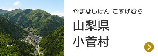 山梨県小菅村